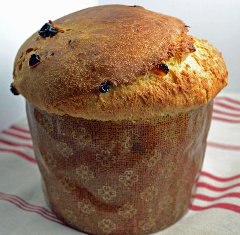 Panettone Recipe - Megan Peck Cooks